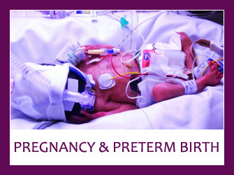 Photo of preterm child in incubator - Clicking on this image will take you to 'Pregnancy & Preterm Birth' section