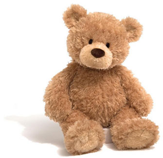 Photo of a Teddy Bear. It can be helpful as part of the grieving process when burying your infant, to consider purchasing 2 identical soft toys, one to bury with your infant and the other to remember him/her by.